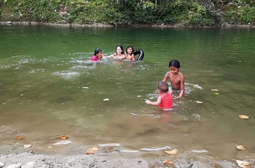 رودخانه ناپو در آمازون و واکسن تب زرد