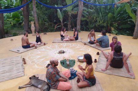 زندگی در مزرعه کاکائو